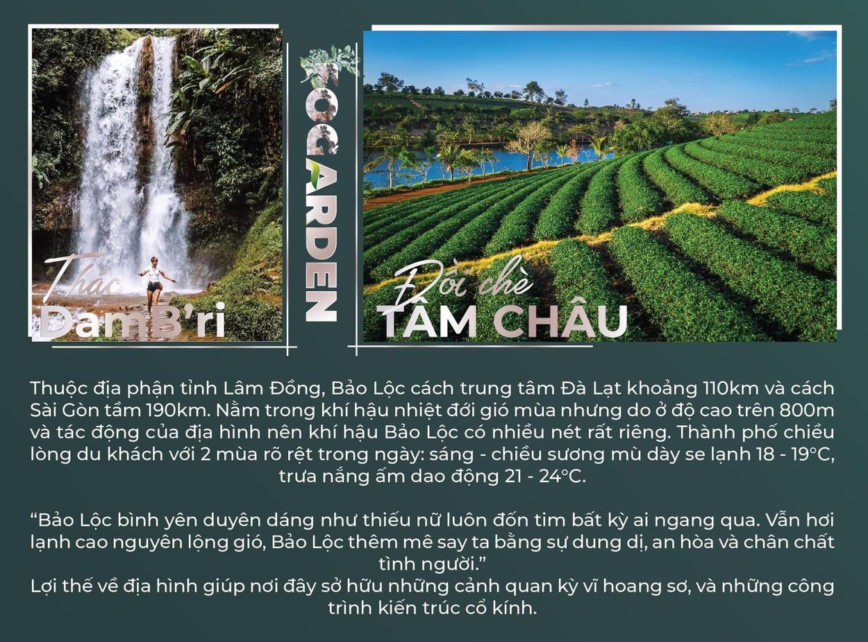 Doi che tam chau - Thac Dam Bri