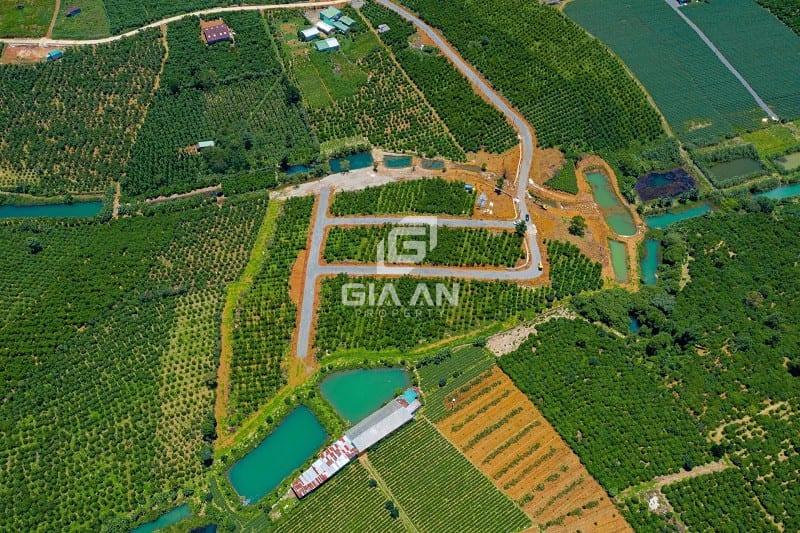 Vì sao đất Bảo Lộc tăng giá ngày càng mạnh?